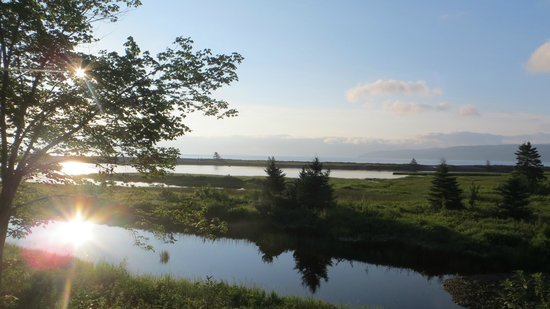Cabot Shores Wilderness Resort : View from Blue Yurt.