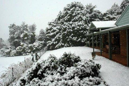 Inverness Farmstay snow