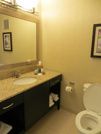 Crowne Plaza Wilmington North: Bathroom