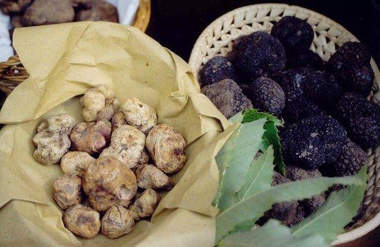 Регион Муджелло, Италия: Tartufo bianco e nero del Mugello