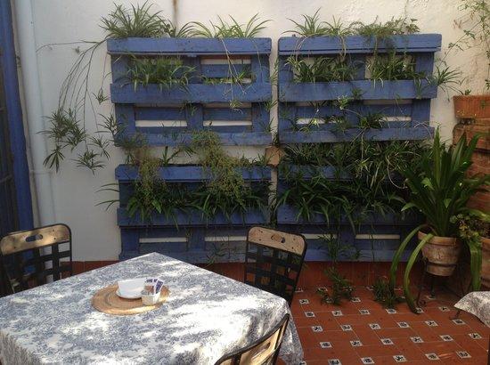 Casa de los Azulejos: Terraza desayunos