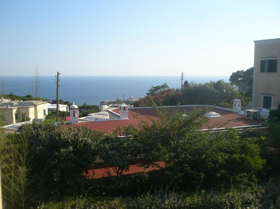 Hotel Villa Sarah: Il panorama dal balcone della nostra camera.