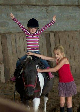 Domaine d'Esperbasque : Indoor horseriding