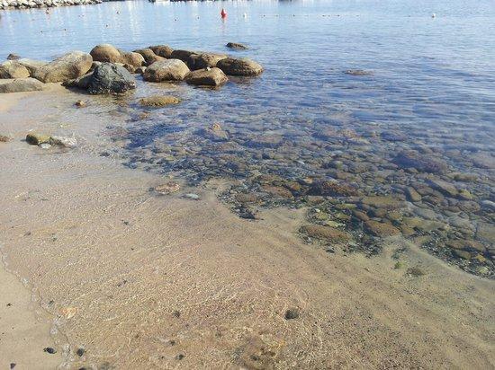 Hotel Marinella: spiaggia di Marciana