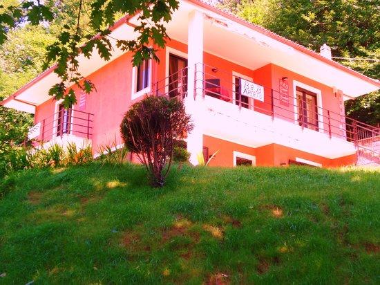 B&B La Casa nel Bosco