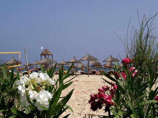 Moevenpick Resort & Marine Spa Sousse: plaża
