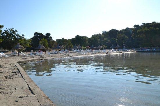 Pine Beach Pakostane : stranden