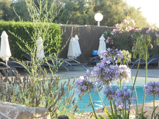 Hotel de la Plage: zwembad