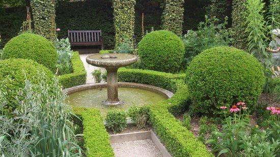 Attirantes ces belles plantes non picture of jardin for Jardin 5 sens yvoire