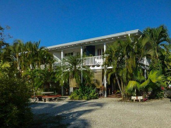 Hotel Horizontes de Montezuma: Hotelansicht