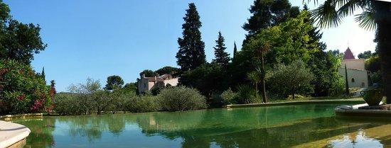 La Royante : Piscine et oliveraie.