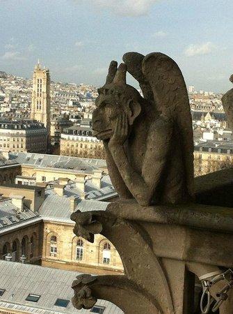 My Hotel in France le Marais by HappyCulture : Vista parigi da cattedrale Notre Dame