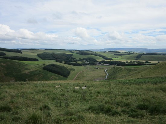 Alnham Farm: Above Ingram
