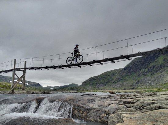 Haugastol Turistsenter: A walking bridge close to the main trail (Really nice for taking photos)