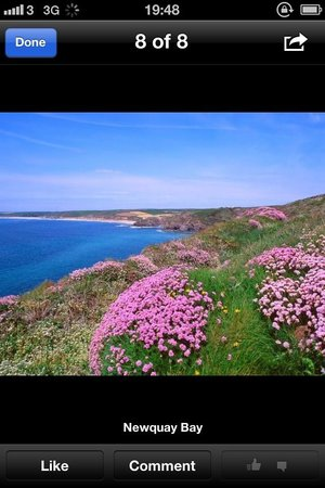Whipsiderry Hotel: Porth island