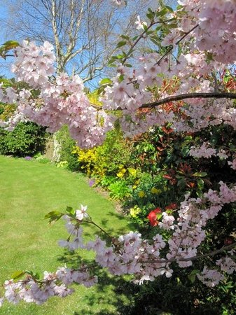 Blandford House Worthing Bed & Breakfast: Relax in the beautiful garden