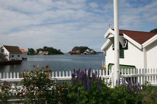 norge chat room Flekkefjord