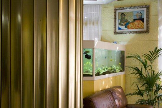 Hotel Terme Pellegrini: particolare acquario hall