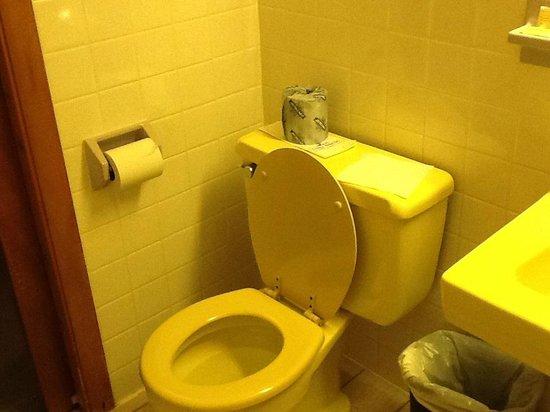 Stardust Motel: Bathroom