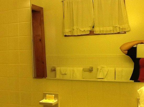 Stardust Motel : Bathroom