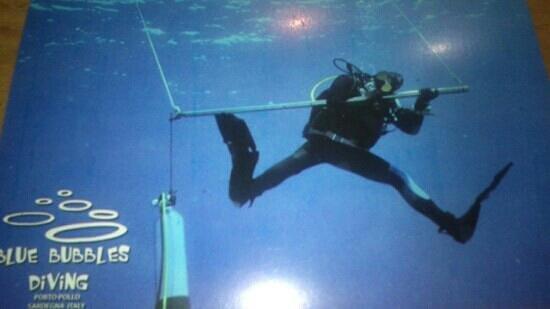 Blu Bubbles Diving : ottimo contesto divino and snorkeling