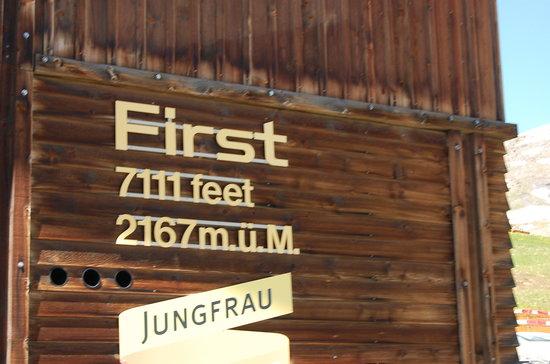 Grindelwald, Swiss: First