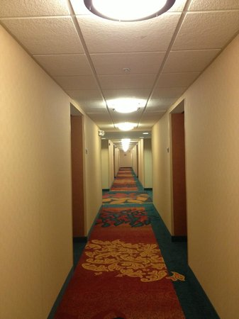 Residence Inn Chicago Waukegan/Gurnee : Bright hall - seems new