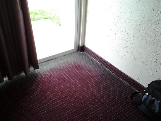 Select Inn Murfreesboro: Moldy carpet