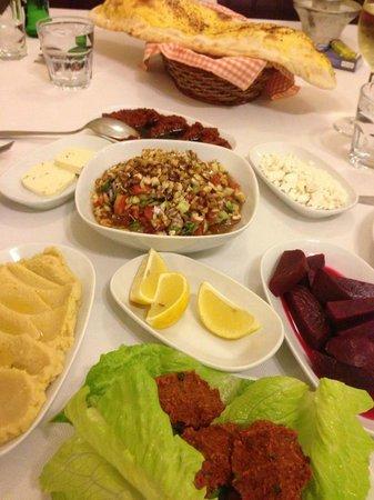 Istanbul Kanatcisi