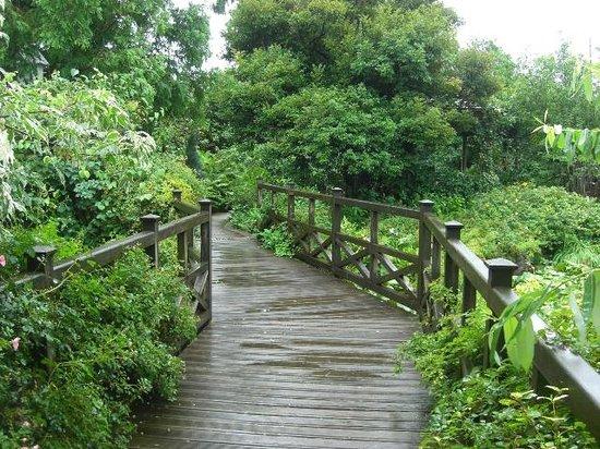 Matsue English Garden: 通路の雰囲気もなかなか。