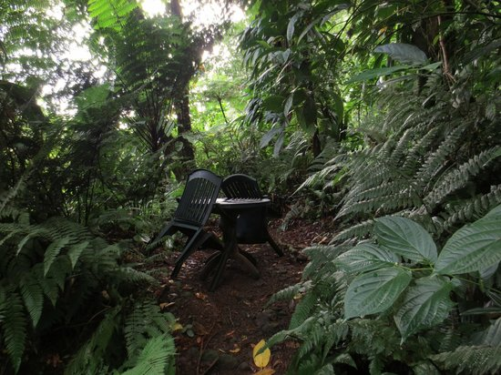 Papillote Wilderness Retreat: One of many secluded sitting areas