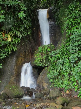 Papillote Wilderness Retreat: Waterfall at the bottom of the garden