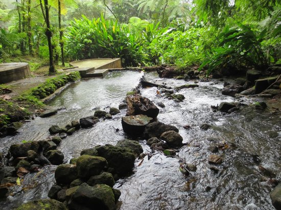 Papillote Wilderness Retreat: the hot and cold pools near the waterfall
