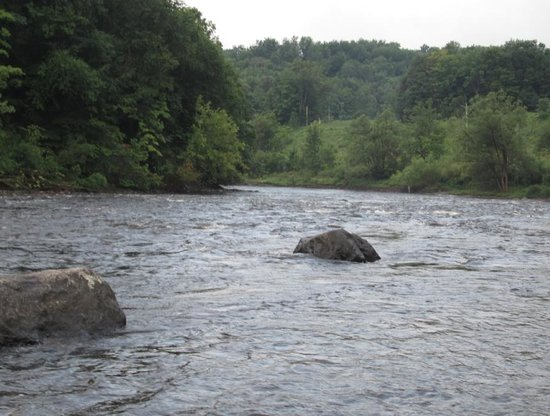 Herkimer KOA Campground: West Canada Creek, view from site