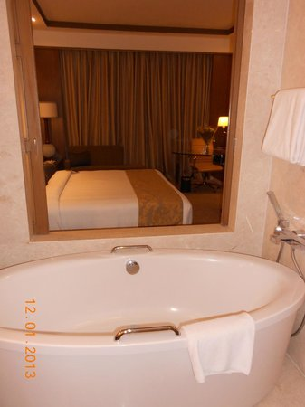 Crowne Plaza Today New Delhi Okhla: vista dal bagno