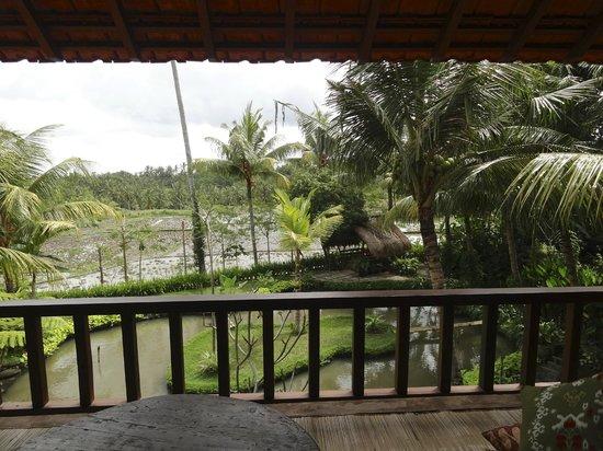Omah Apik: Magnifique jardin