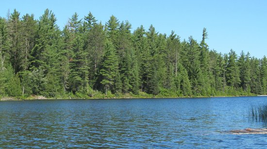 Beauchene Wilderness Lodge: View of the lake