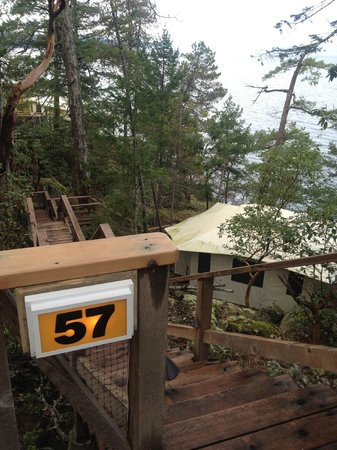 Rockwater Secret Cove Resort: walkway and steps down to yurt