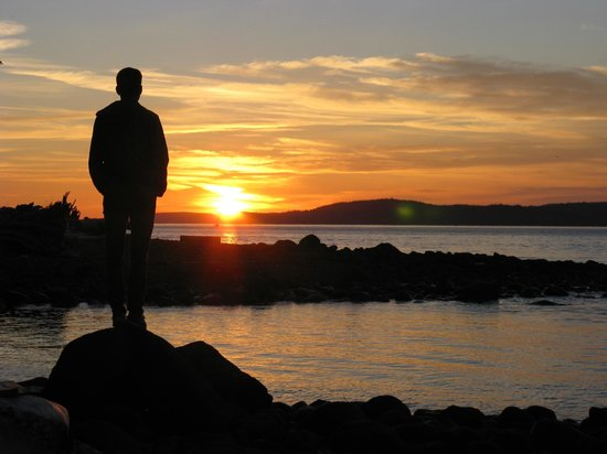 Wildcoast Adventures - Day Tours: Sunset from Orca Camp