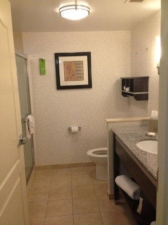 Hampton Inn Jericho - Westbury: Bathroom