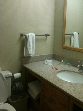 Holiday Inn Allentown Center City: Decent bathroom