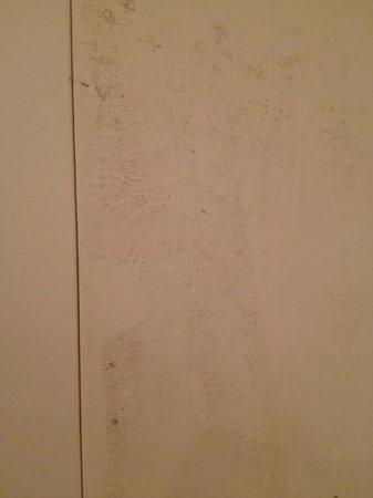 Le Grand Bec : moisissure salle de bain