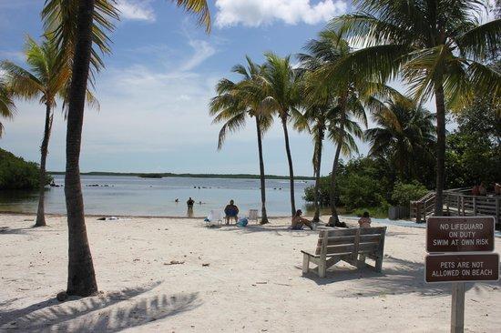John Pennekamp Coral Reef State Park: Far Beach