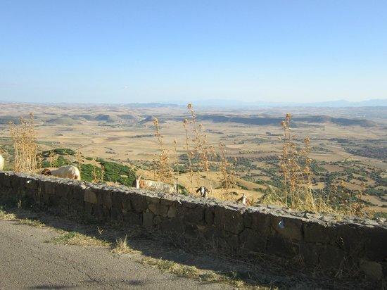 Giara di Gesturi - Escursioni a Cavallo: panorama