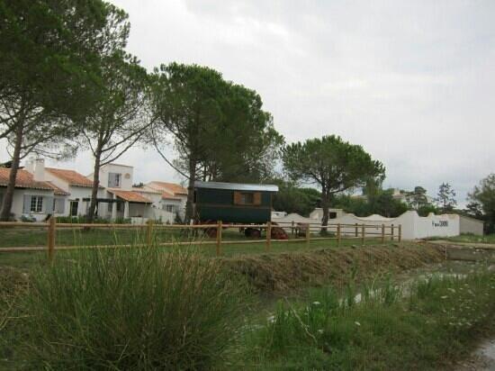 Le Petit Train Camarguais : roulotte