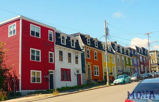 Quality Hotel Harbourview: colourful Newfoundland houses