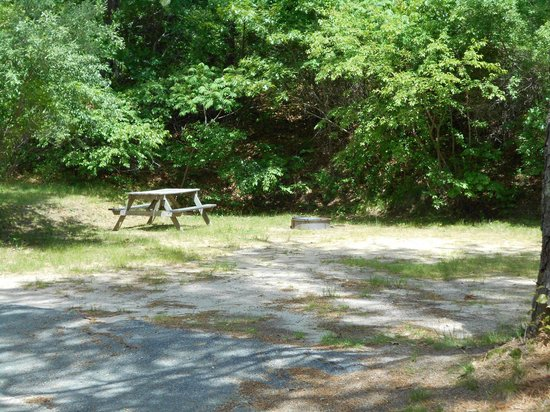 Peters Pond RV Resort: Secluded camping and economy sites