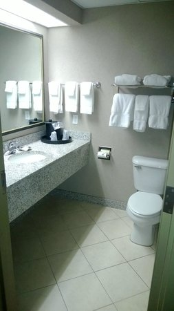 BEST WESTERN PLUS Sandusky Hotel & Suites: Bathroom