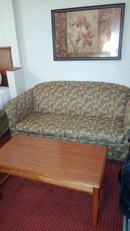 BEST WESTERN PLUS Sandusky Hotel & Suites: Suite Area