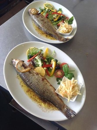 The Rum Runner: oven roasted whole sea bass with salad and comes with new butter and fresh parsley new potatoes
